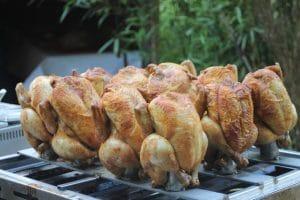 Hele kippen eten bij de mannenspeeltuin