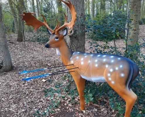 Bow Hunting / Boogschieten Mannenspeeltuin #D doel hert