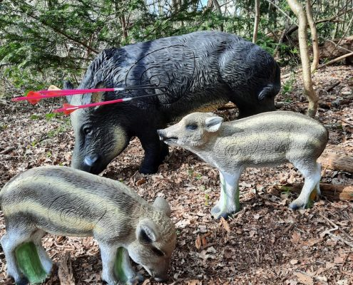 Boogschieten op 3D dieren